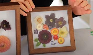 A Beautiful, Simple Way to Display and Preserve Flowers!