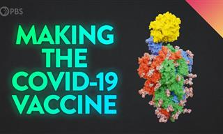 Take a Peek at the Lab That Invented the COVID-19 Vaccine