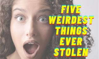 These Might Be the 5 Weirdest Things Ever to Be Stolen