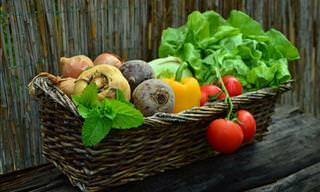 A Guide to Planting and Growing a Variety of Vegetables