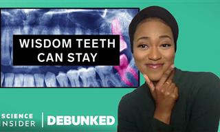 Dentists Bust 14 Popular Teeth Myths We've All Believed