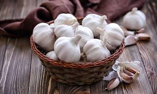 The Benefits of Adding Garlic to Your Garden