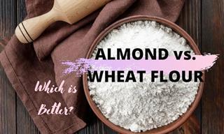 Almond Flour vs. Wheat Flour: Which is Better?
