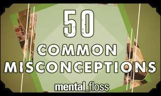 50 Common Misconceptions Busted - Fascinating!