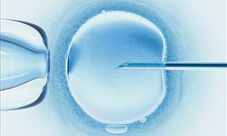The DNA of Human Embryos Can Be Significantly Improved