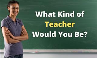 What Sort of Teacher Would You Be?