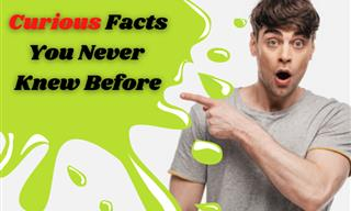 The Most Interesting and Weird Facts You Never Knew