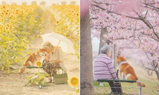 Grandson Depicts the Sweet Bond Between Grandma and Her Dog
