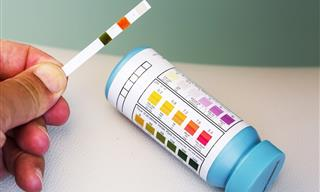 How to Balance Your Body's pH Levels