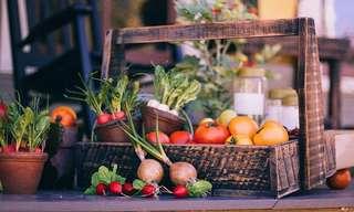 Winter Herbs & Veggie Garden