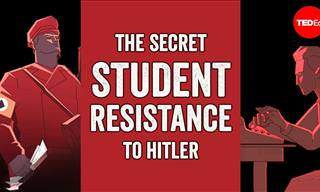 White Rose: the Brave Student Resistance to Nazi Germany