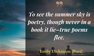 14 Fun and Happy Quotes to Celebrate the Summer Season