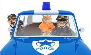 80 Hilarious Police Jokes and Puns!