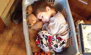 17 Sweet Moments from the Life of Children and Dogs
