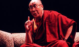 The Dalai Lama's Ultimate Guide to Happiness