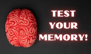 Test Your Memory With Our Tandem Quiz!