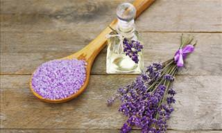 5 Essential Oils That Are Highly Beneficial to Your Brain
