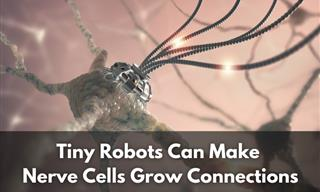 Tiny Robots Might Be Used to Repair Severed Nerve Cells