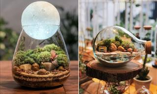 These 14 Dreamy Terrariums Marry Art and Gardening