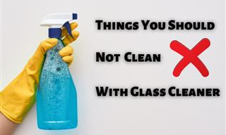Never Clean These Household Items With Glass Cleaner