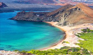 The Breathtaking Beauty of the Galapagos Islands