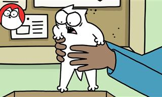 A Special Simon's Cat: The Origins Story!