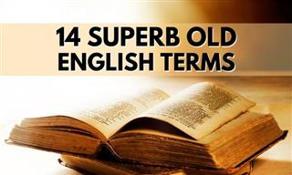 14 Rare and Obsolete Terms That Deserve to Be Used More