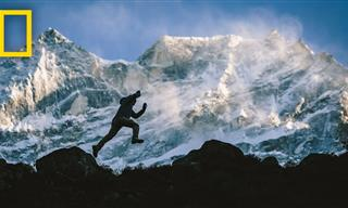 This Man Climbed Everest 21 Times - Incredible!