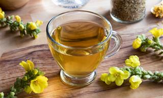 5 Delicious Teas for Asthma Relief and Respiratory Health