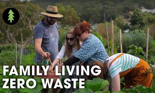 Learn How to Lead a Life With Less Waste From This Family