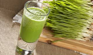 Here Are 7 Great Health Benefits of Wheatgrass