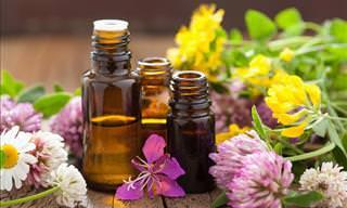 12 Natural Essential Oils for Pain Relief