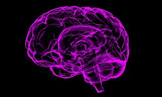 11 Mind-Boggling Brain Facts