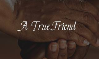 What Makes a Friend True?