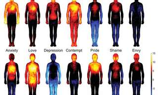 Emotional Heat - Where Do We Feel Emotions?