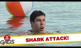 Beware! Orchestra Attack - Funny Prank!
