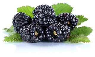 The Many Health Benefits of Blackberries