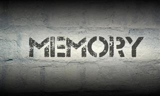 Memory Quiz: Can You Remember These Details?
