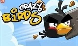 Game: Crazy Birds