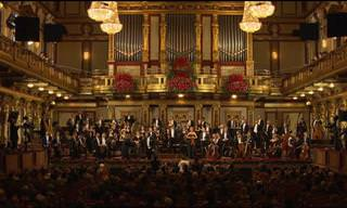 WATCH: Hungarian Symphony Orchestra Interprets Brahms