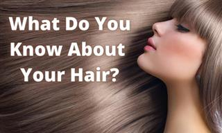 Test: What Do You Know About Your HAIR?