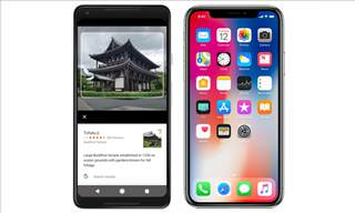 The Google Pixel 2 and Apple iPhone X Head-to-Head