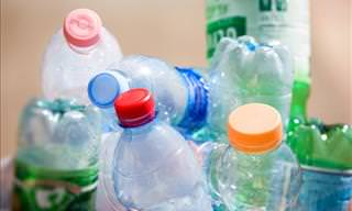 Scientists Create Plastic-Eating Enzyme
