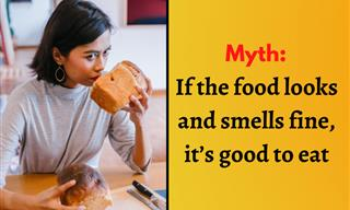 Myths about Food Safety You Shouldn't Believe
