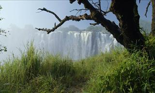 Behold the Raw, Natural Beauty that is Zambia