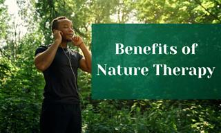 Ecotherapy – The Wonderful Practice That Diffuses Stress