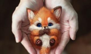 20 Photos Cute Creatures Created by Malaysian Artist