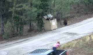 Bear Cubs Rescuers - A Good Deed!