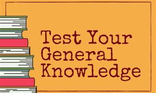 QUIZ: Do You Know Enough For This General Trivia Test?