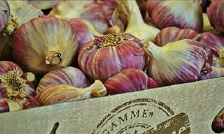 14 Unusual Uses for Garlic